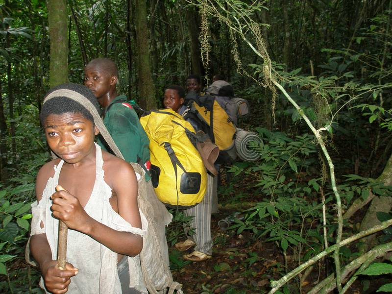 Local porters carry the survey equipment through the forest (© Pius Nkumba, WCS TMLP)