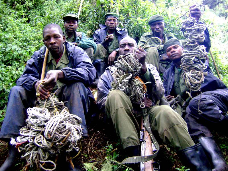 Rangers of the Virunga National Park with snares (© www.gorilla.cd)