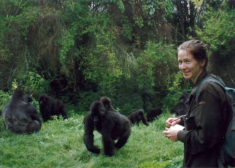Ymke Warren during her observation of the mountain gorillas in Rwanda