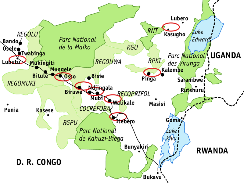 UGADEC region in northeastern Congo